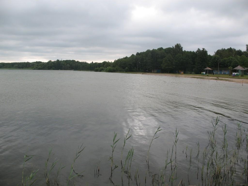 Вірші твір опис дно річки або озера