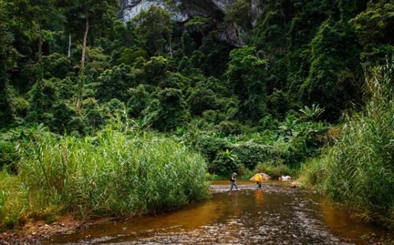 Національний парк Фонгня-Кебанг, В'єтнам telegraph.co.uk