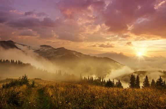 Роксана Баширова: Світанок у Карпатах. Карпатський національний природний парк