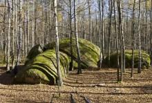 камінне